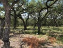 Lot 2058 Wellesley Wood, Shavano Park, TX 78231