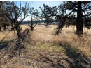 23-Lot SW Wooden Trestle Court, Powell Butte, OR 97753