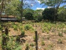 Lots C1-C2: Build your home in this 11,801 sq. ft double lot!, Playa Potrero, Guanacaste