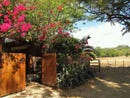 Casa Rana: Charming Two Bed, Two Bath Home, Sámara, Guanacaste
