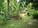Waterfall Country Home and Rental House, Uvita, Puntarenas