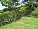 Don't miss this incredible offer in Puntarenas: Huge land for sale surrounded by lots of nature and, Paquera, Puntarenas
