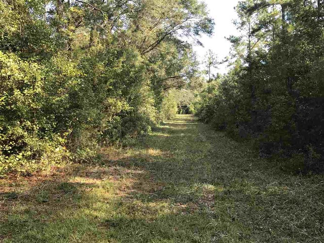 XXXX W W  Kelley Road, TALLAHASSEE, FL 32311 - iproperty com my